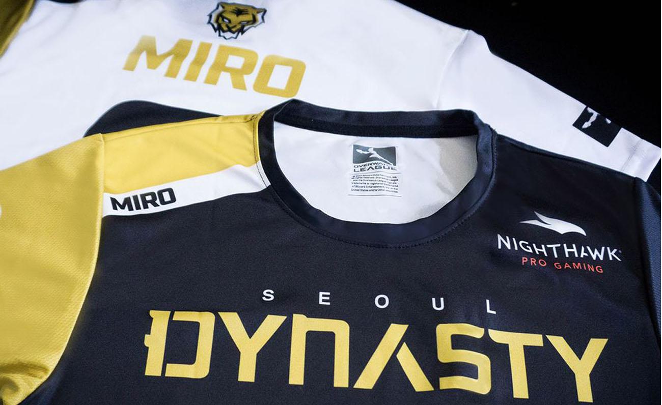 SeouL Dynasty Netgear esports