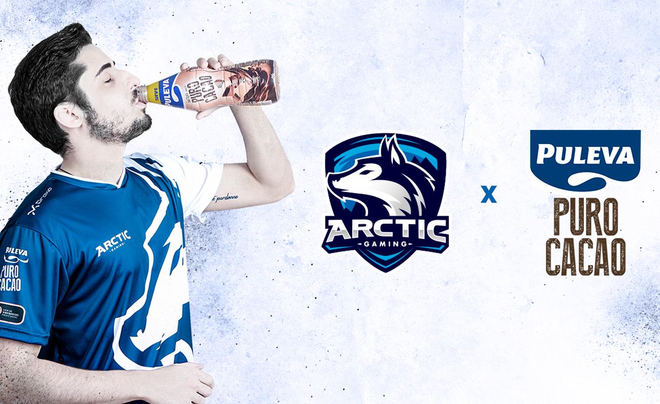 PULEVA Arctic esports