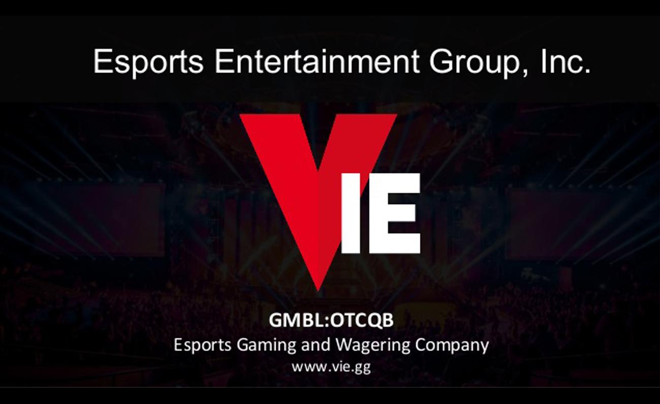 VIEgg esports