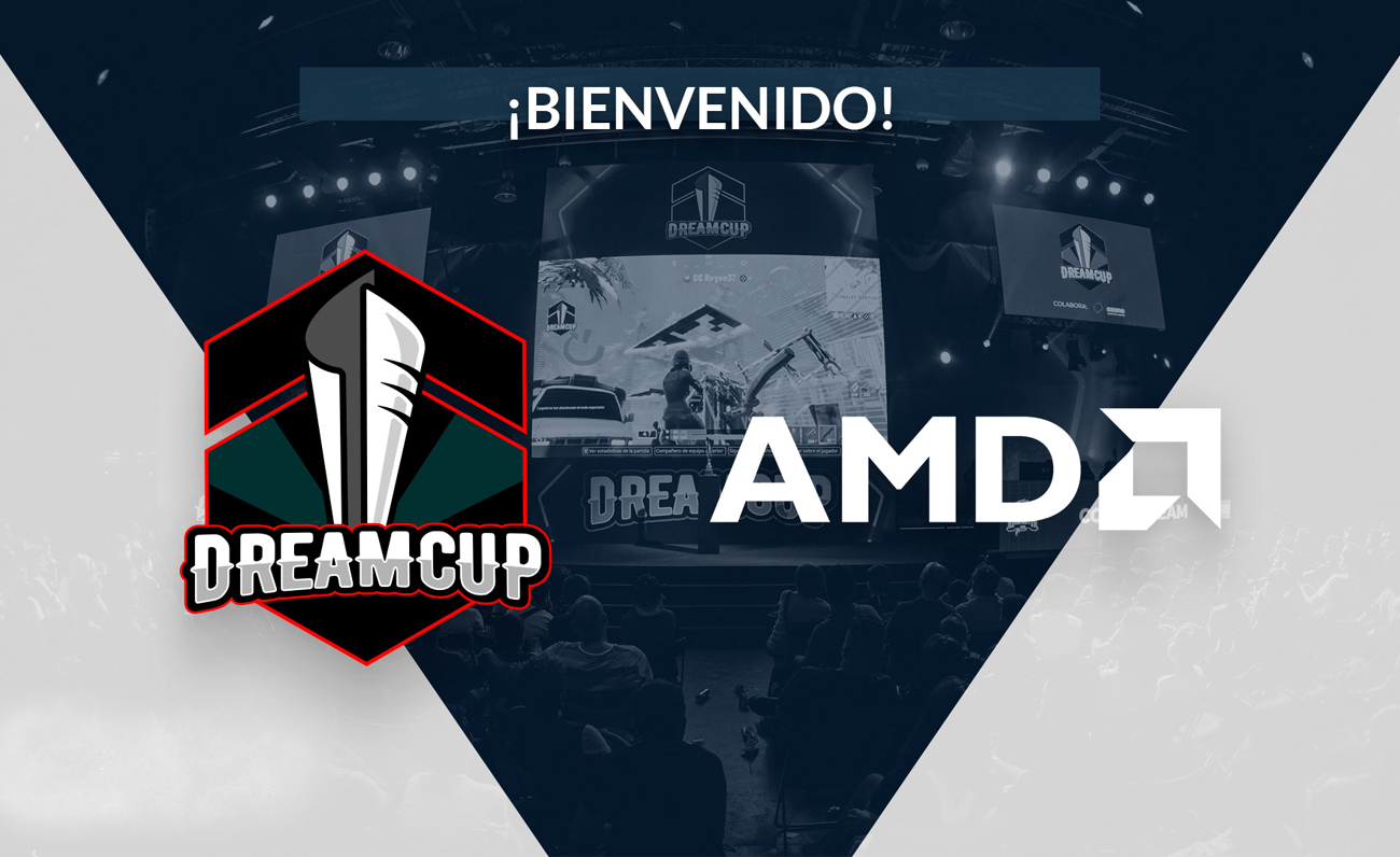 Dreamcup AMD